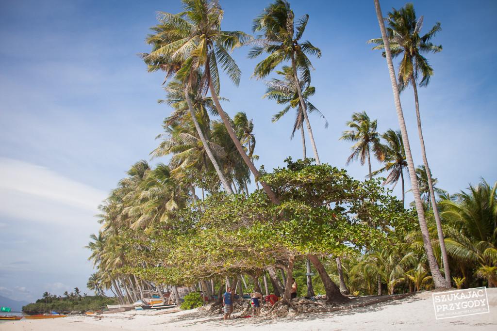 Siquijor IMG 5533 1024x683 - Paliton beach