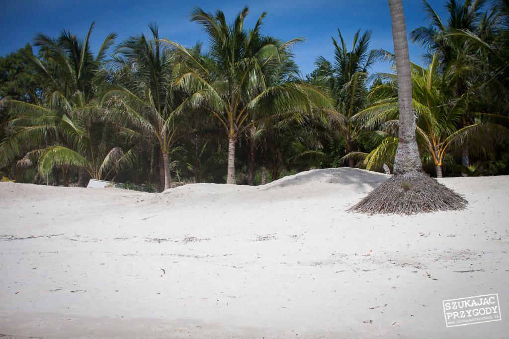 Siquijor IMG 5534 1024x683 - Paliton beach