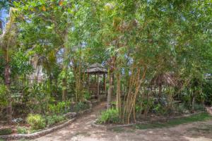 Siquijor IMG 0421 300x200 - Mango Tango - Guest House