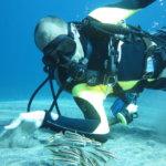 Siquijor IMG 2447 150x150 - Apo - Diver