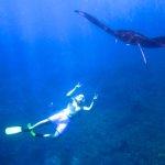 Siquijor IMG 2544 150x150 - Apo - Diver