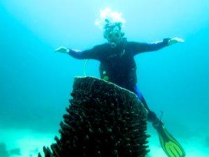 Siquijor IMG 5968 300x225 - Apo - Diver