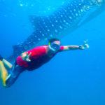 Siquijor IMG 6689 150x150 - Apo - Diver