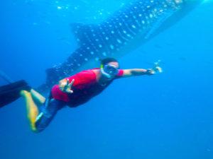 Siquijor IMG 6689 300x225 - Apo - Diver