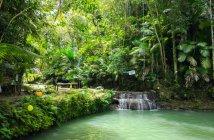 Siquijor IMG 20170717 125516 214x140 - Cabugsayan Falls