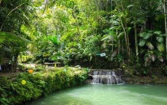 Siquijor IMG 20170717 125516 343x215 - Cabugsayan Falls