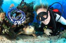 Siquijor siquijor divers facebook 214x140 - Siquijor Divers