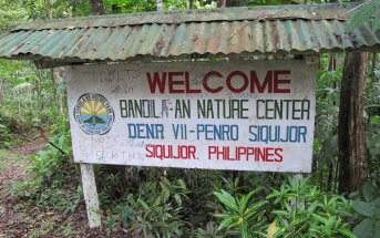 Siquijor IMG 1961 343x215 - Mt. Bandilaan National Park