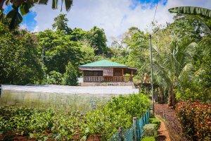 Siquijor IMG 0619 300x200 - The Farmhouse - San Juan